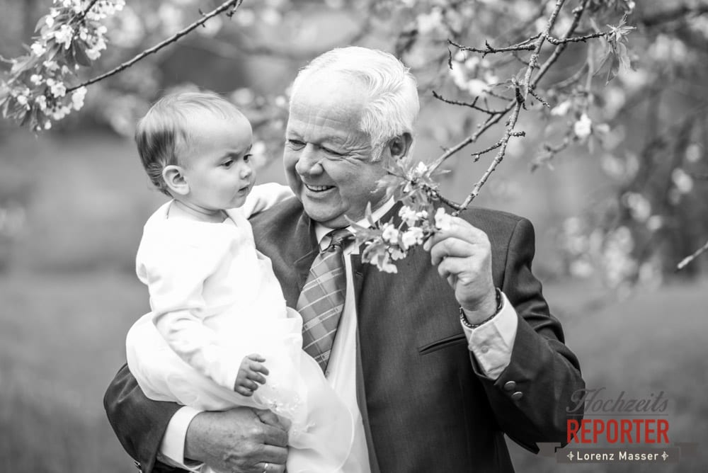 Opa mit Enkel bei einem Kirschbaum, Radstadt, Hochzeitsfotograf, Wedding Photographer,Land Salzburg,  Lorenz Masser