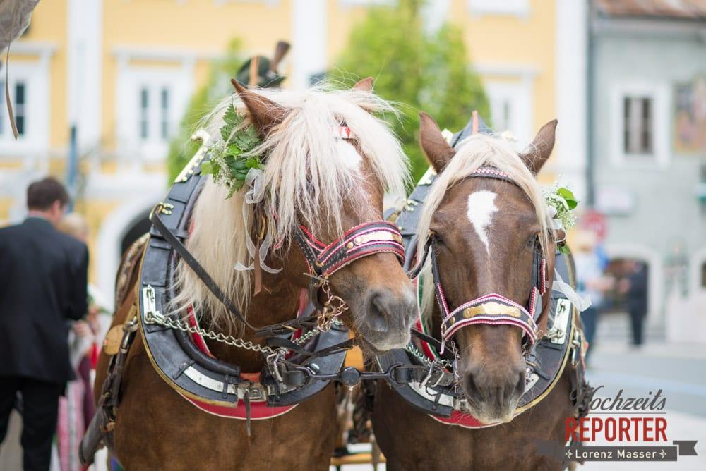 Pferdekutsche, Pferde, Radstadt, Hochzeitsfotograf, Wedding Photographer,Land Salzburg,  Lorenz Masser