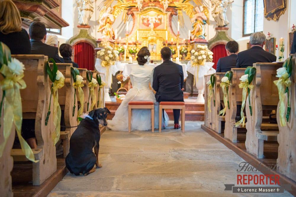 Hund schaut in die Kamera während Trauung, Schloss Prielau, Zell am See,  Wedding Photographer, Hochzeit,Hochzeitsfotograf, Land Salzburg, Lorenz Masser